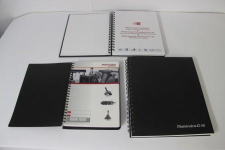 Diarys